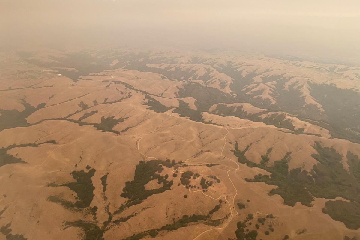 В результаті пожеж в Америці в атмосферу потрапило понад 30 млн тонн вуглецю \ фото REUTERS
