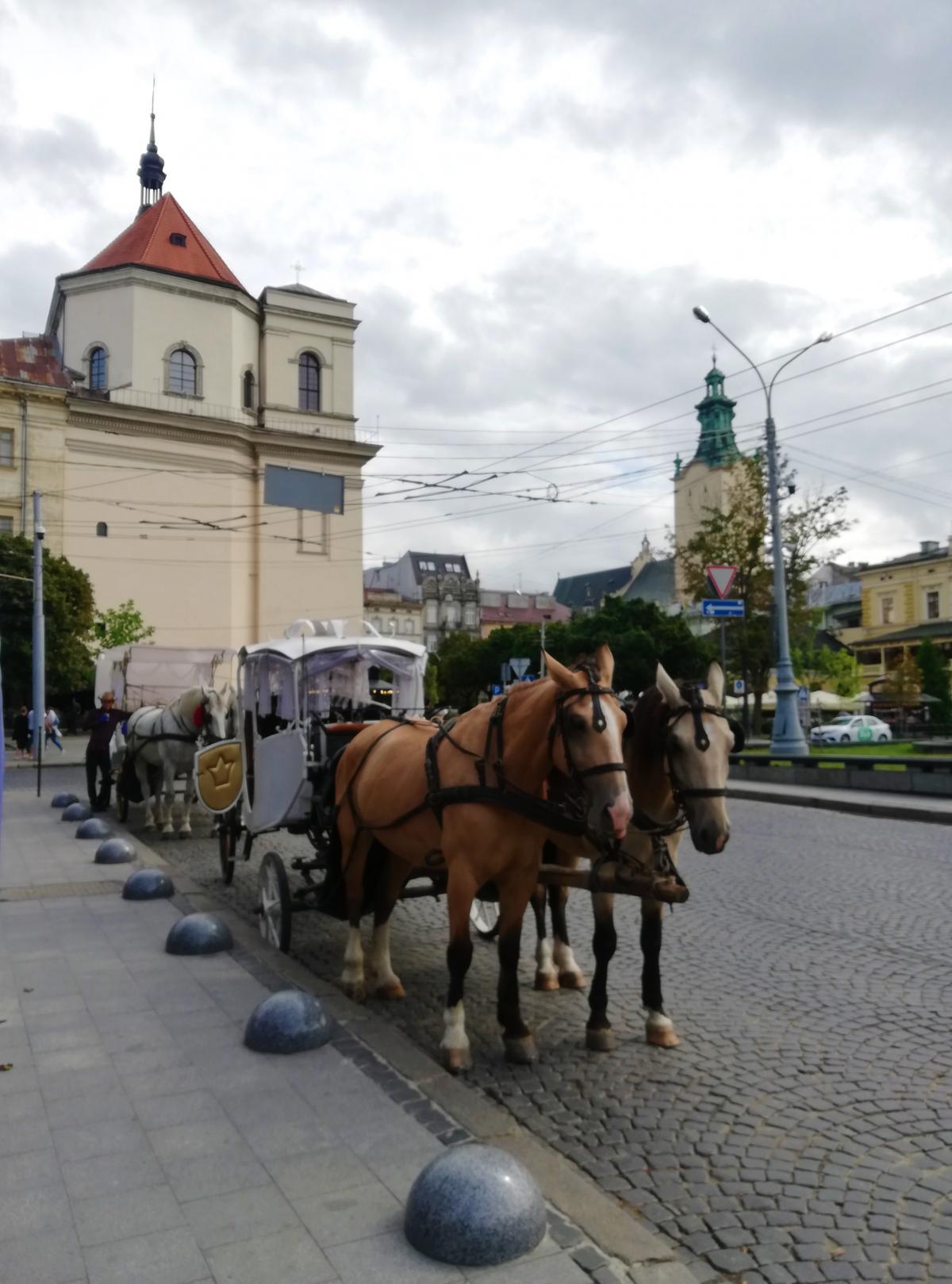 Туристичний Львів дуже різноманітний / фото Марина Григоренко
