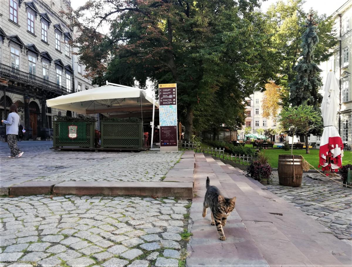 Львів поступово відновлює туристичні потоки / фото Марина Григоренко