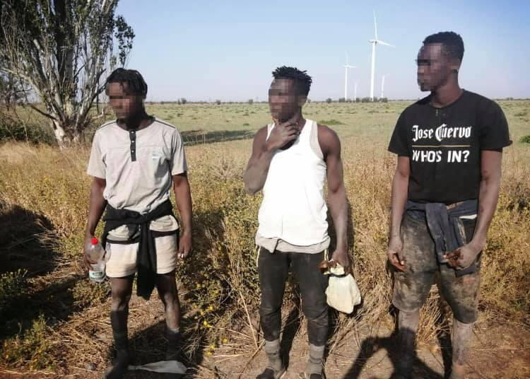Троє громадян Гвінеї незаконно прибули до України / фото Херсонського прикордонного загону ДПСУ