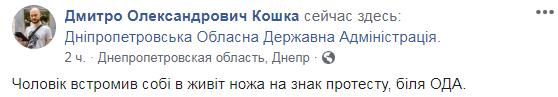 Кошка прокомментировал инцидент / Фото скриншот