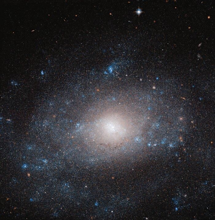 Галактика NGC 5585 / фото ESA/Hubble & NASA, R. Tully Acknowledgement: Gagandeep Anand