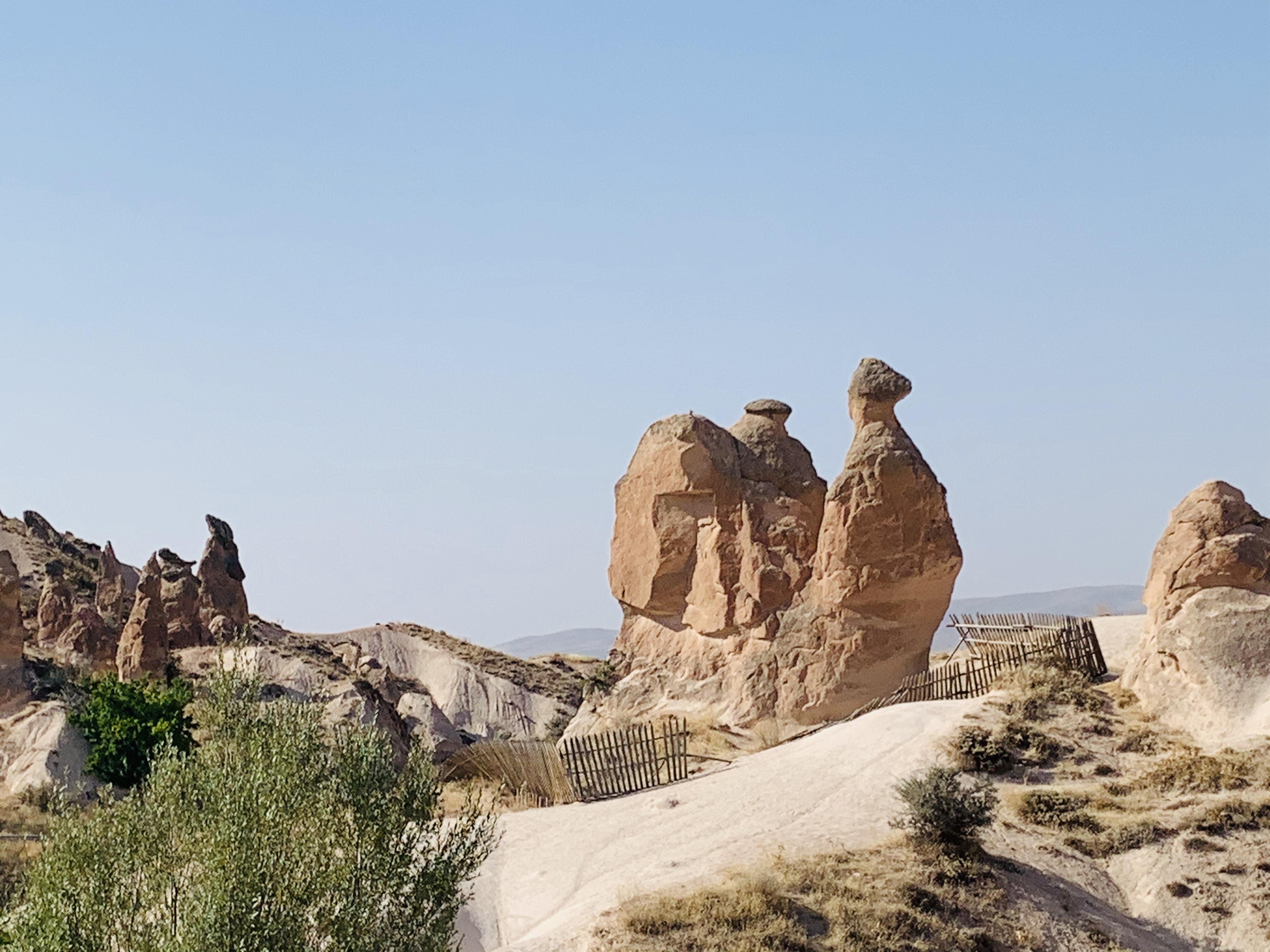 А здесь можно разглядеть верблюда / фото автора