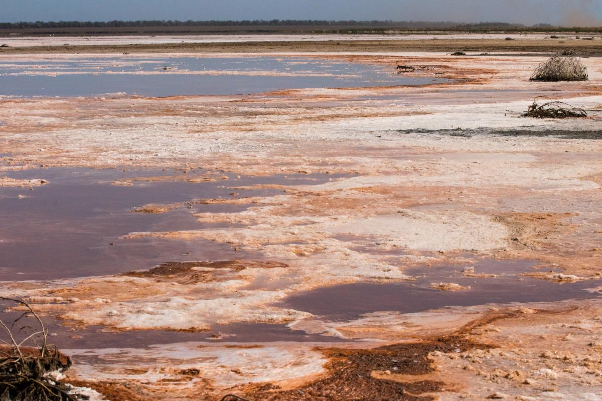 Причина высыхание - нарушение водообмена с Черным морем/ Фото: facebook.com/rusevivan