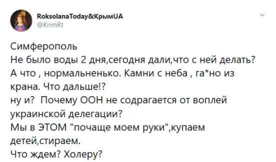 Скриншот / Фото twitter.com/KrimRt