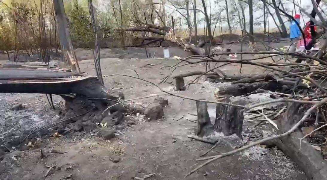 Кадры с места авиакатастрофы Ан-26 / скриншот с видео