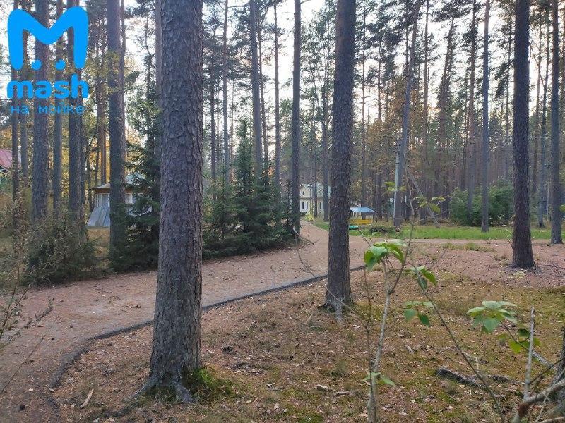 Місце, де ховався депутат / фото t.me/mashmoyka