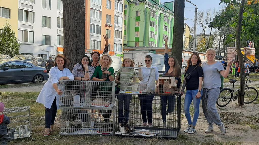 24 бездомных животных раздали людям в Ирпене / Фото itvua.tv