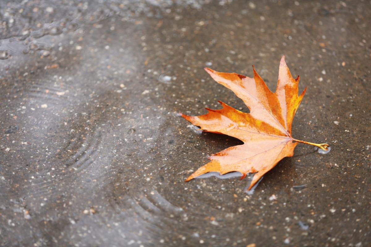 Дожди возвращаются в страну / Фото ua.depositphotos.com