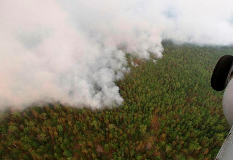 Пожежі в Сибірі - науковці розповіли про вплив росіян на забруднення планети REUTERS