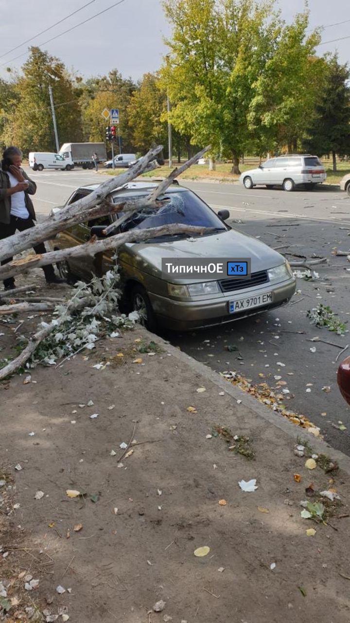 Ураган у Харкові став причиною пошкоджень кількох авто / фото типове ХТЗ