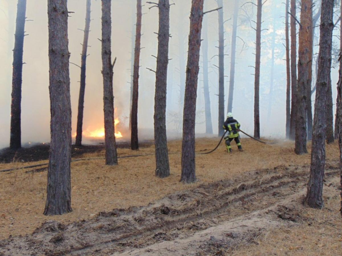 Спасатели пытаются потушить пламя / фото ГСЧС