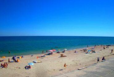 На Азовском море туристов атакуют морские блохи (видео)