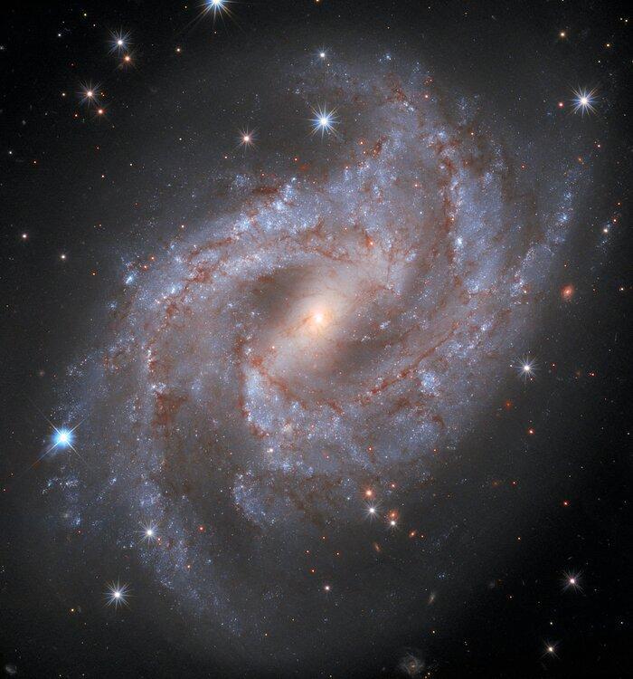Ученые предполагают, что в центре этой галактики скрывается сверхмассивная черная дыра / фото ESA/Hubble & NASA, A. Riess and the SH0ES team