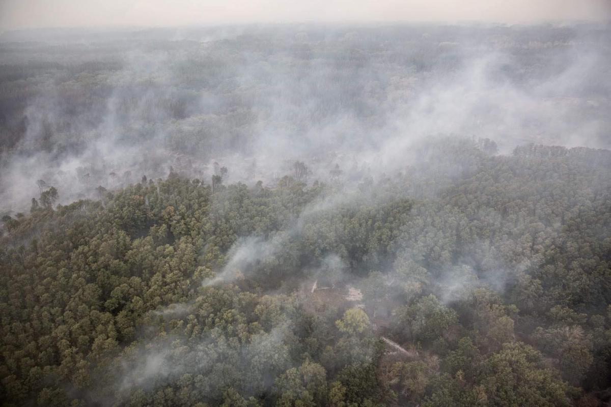Пожары в Станице Луганской - боевики обстреляли позиции ВСУ / REUTERS