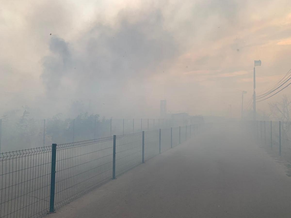 Пожары на Луганщине - стало известно об основных версиях возникновения пожаров / REUTERS