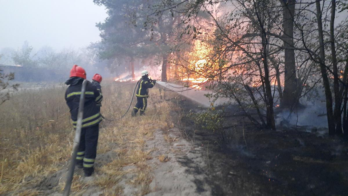 Волонтер о причинах пожара: Официальная информация - неосторожное обращение с огнем / фото ГСЧС