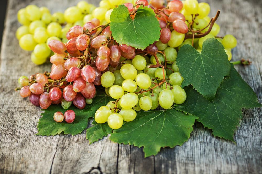 Польза винограда для здоровья / фото ua.depositphotos.com