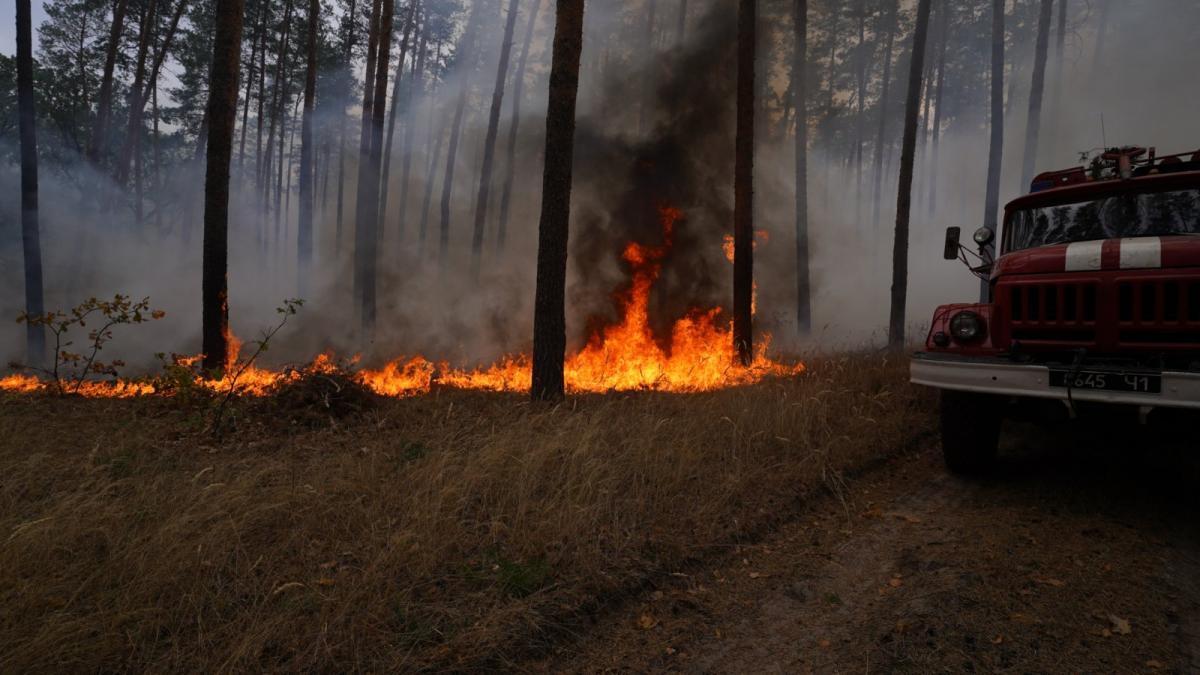 Пожары в Луганской области - пропавшими считаются четыре человека / dsns.gov.ua