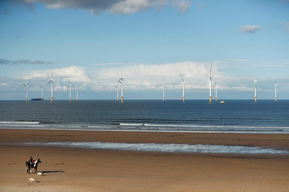 """Возобновляемая энергетика """"съедает"""" конкурентов / фото REUTERS"""