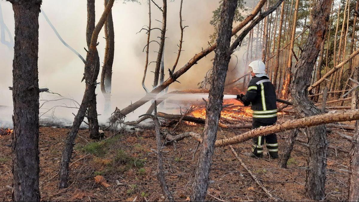 На Луганщине в этом году были масштабные пожары / фото ГСЧС Украины