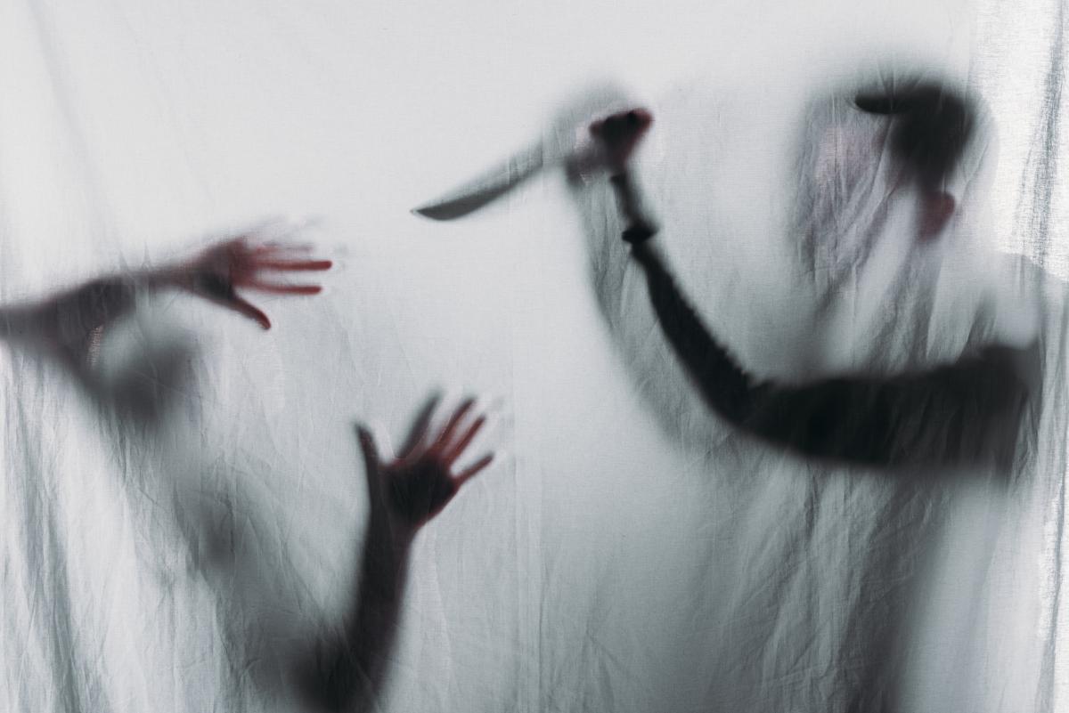 На Волыни мужчина напал с ножом на брата, жену и полицейского / фото ua.depositphotos.com