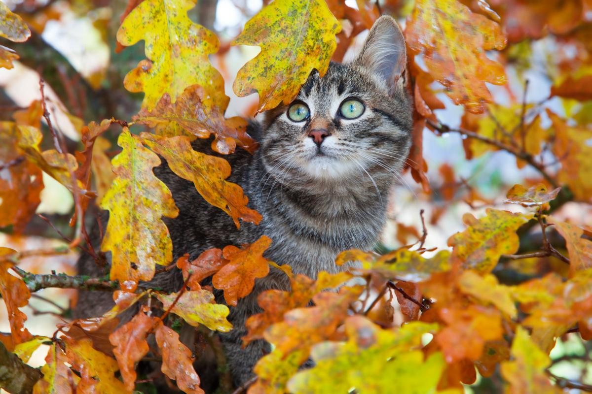 Сегодня в Украине немного потеплеет / Фото ua.depositphotos.com