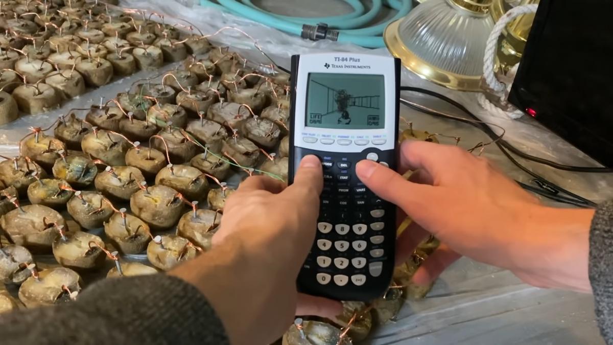 DOOM запустили накалькуляторе, работающем отэнергии картошки