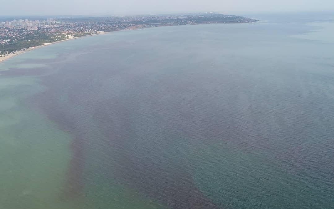 Море окрасилось в красный цвет из-за микроорганизмов / Фото Владислав Балинский