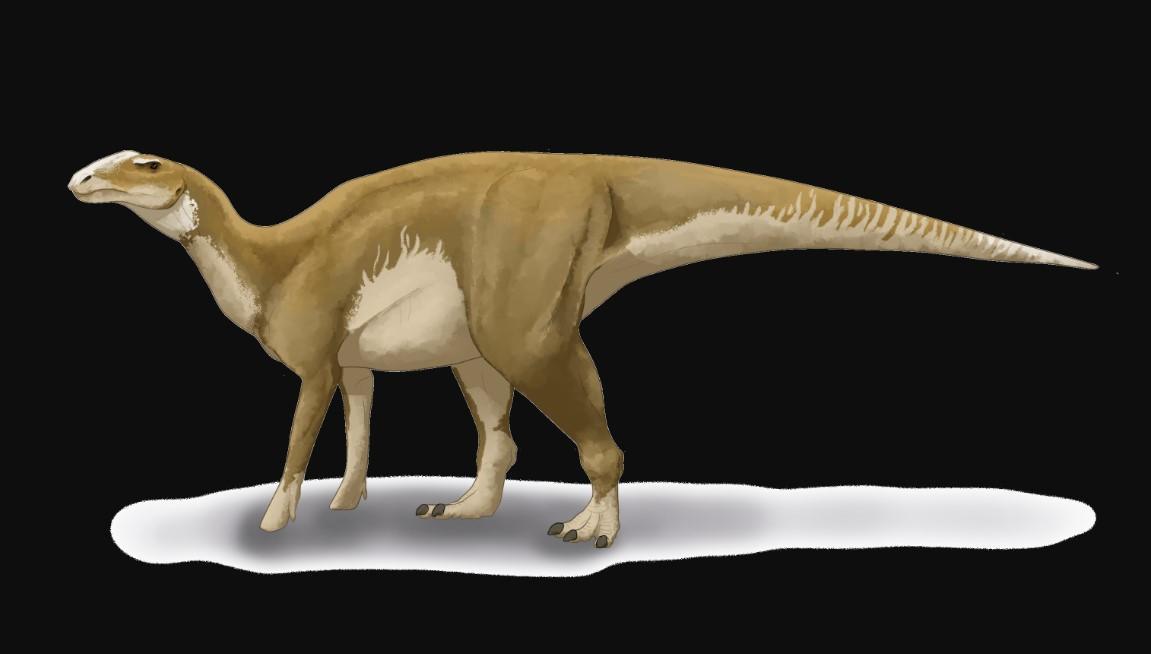 Реконструкція зовнішнього вигляду гадрозавра / фото Вікіпедія