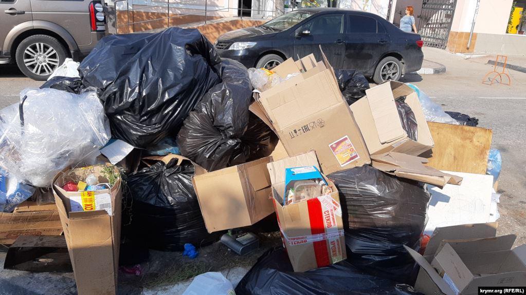 Сміття пролежало на узбіччі 5 місяців \ фото krymr.com