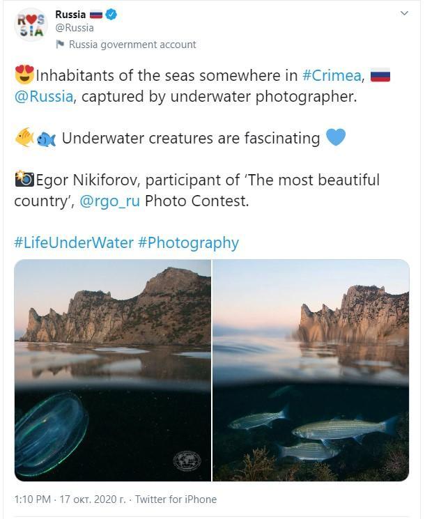скріншот / Russia / Twitter
