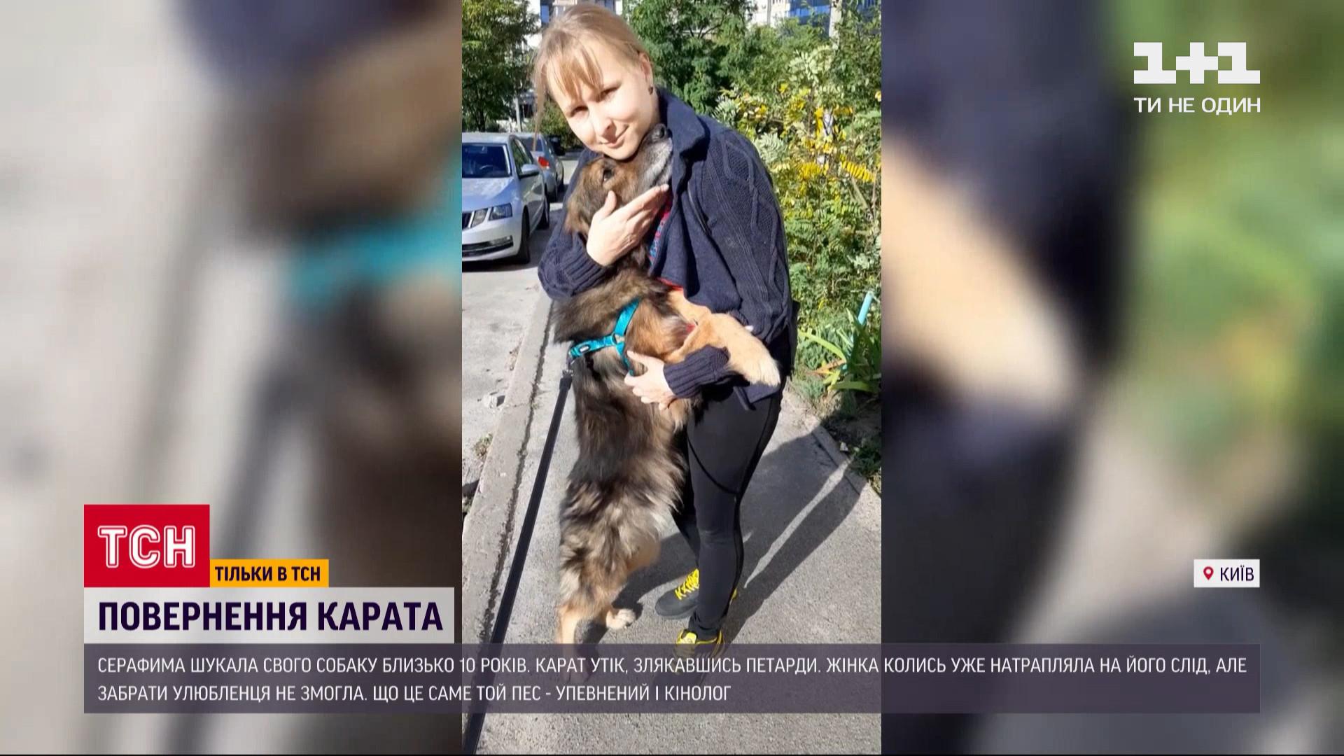 Собака повернувся до родини після 11 років зникнення