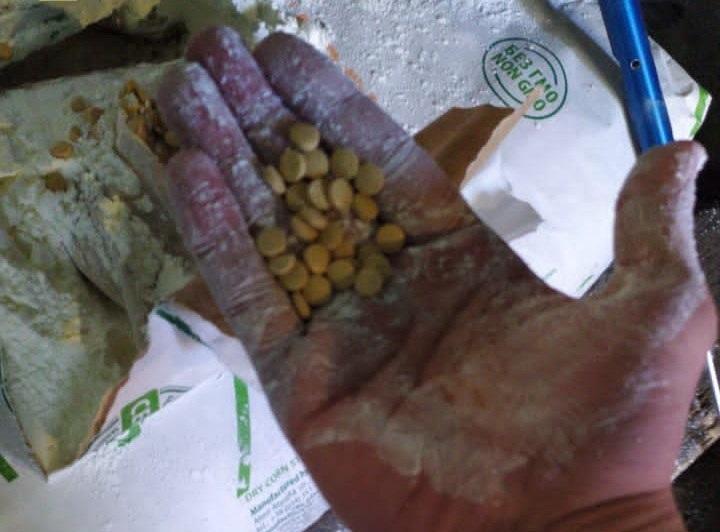 Наркотики спрятали в партии кукурузного крахмала / фото ssu.gov.ua