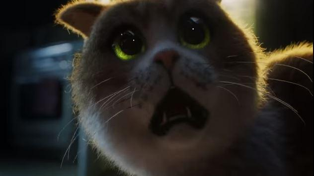 Создали первый фильм ужасов про кота и огурец / Фото скриншот