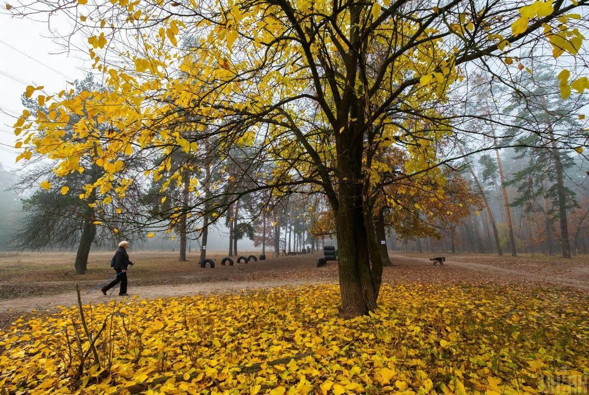 На выходных Украину оставит тепло / фото УНИАН