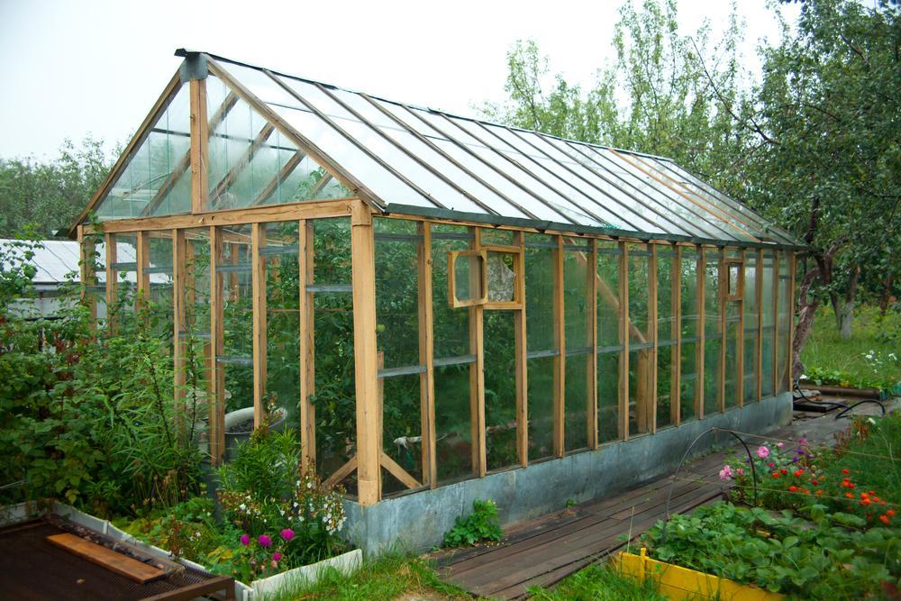 Благоприятные и неблагоприятные дни для работы в саду и огороде в ноябре / фото ua.depositphotos.com