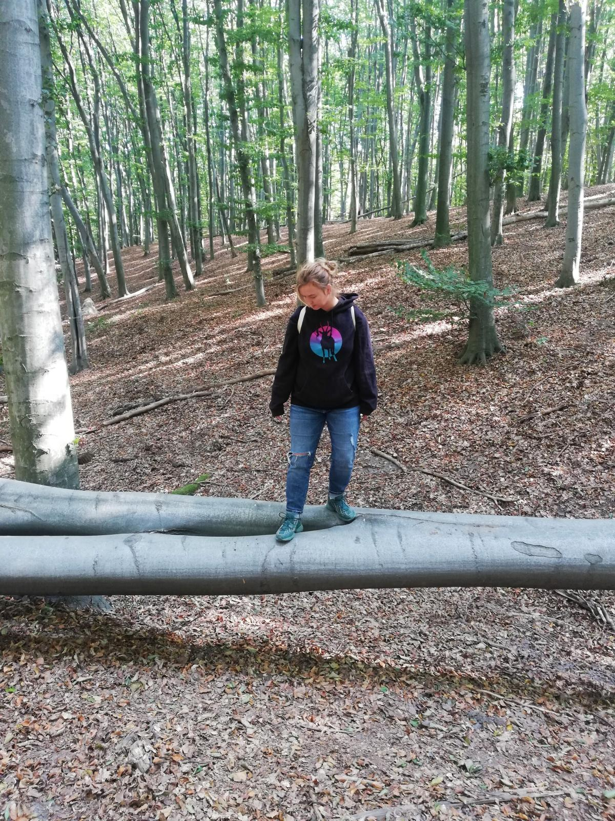 В Голосеевском лесу есть где разгуляться / фото Марина Григоренко