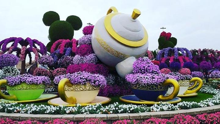 Dubai Miracle Garden - найбільший квітковий сад в світі \ instagram.com/dubaimiraclegarden/