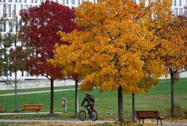 Золотая осень уходит: синоптики рассказали, когда ждать дождей со снегом