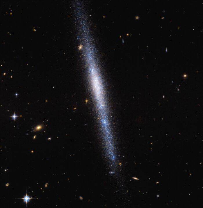 Галактика UGCA 193 находится в созвездии Секстанта / фото ESA/Hubble & NASA, R. Tully