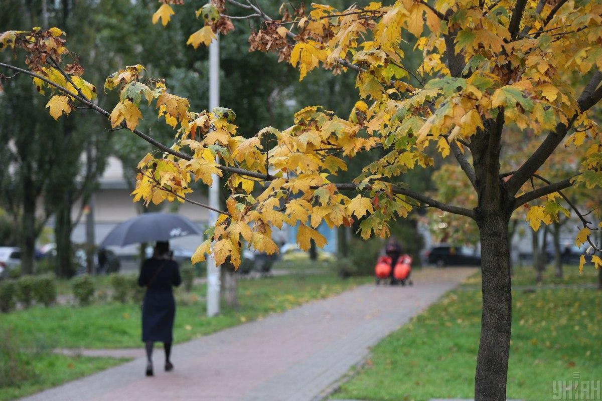 Сегодня в Украине местами пройдут дожди / фото УНИАН