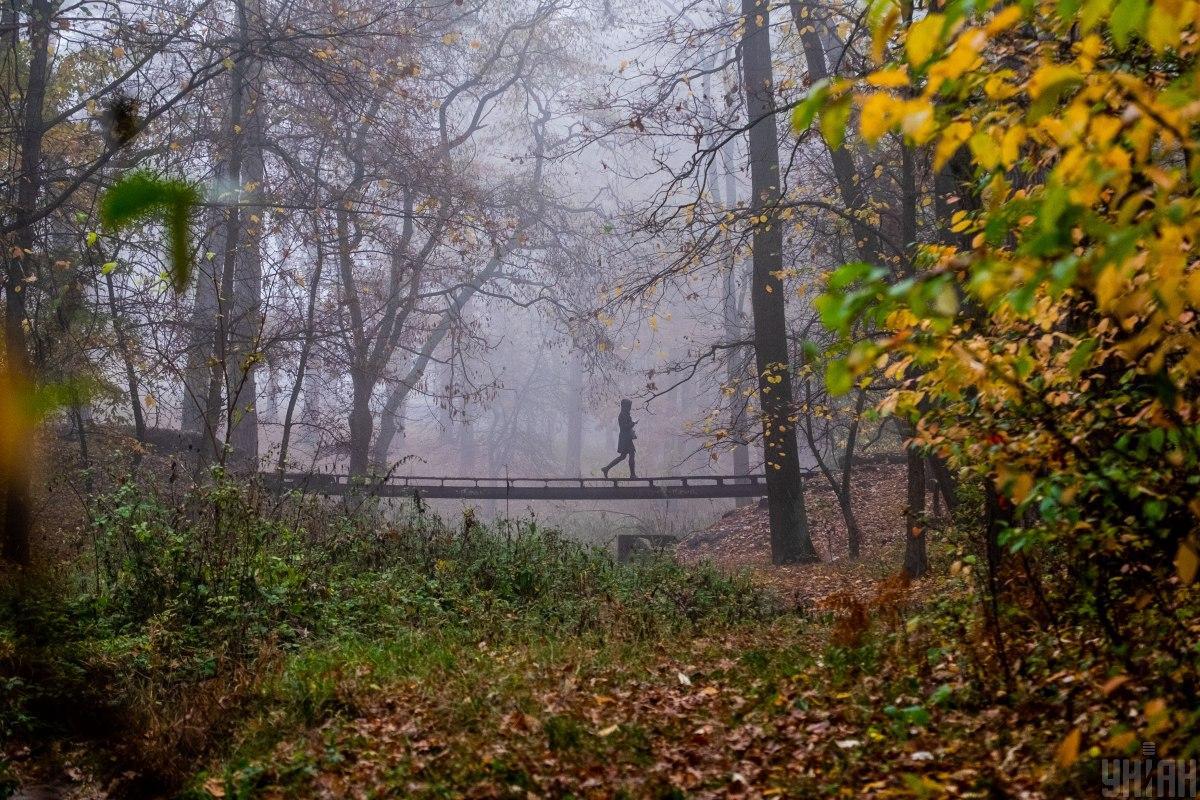 Сьогодні на українців чекає сильний туман / фото УНІАН