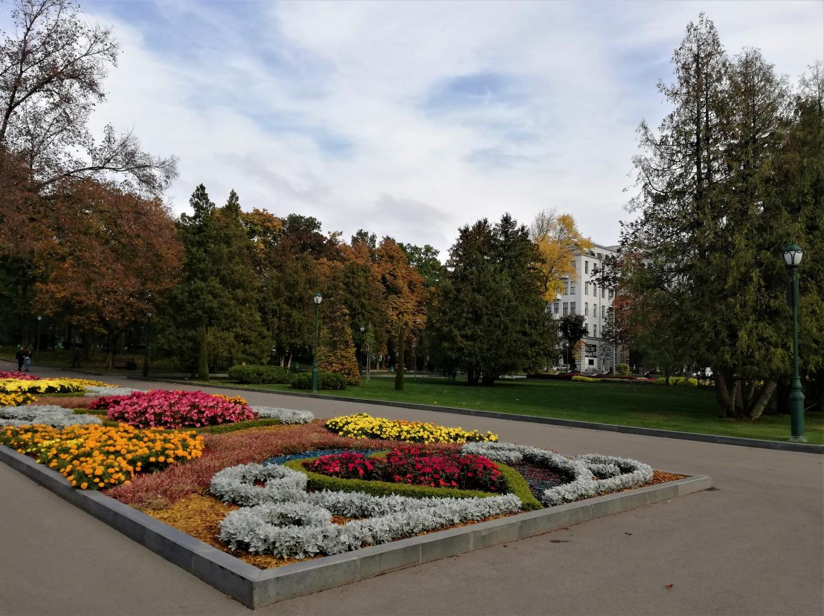 Сидіння на газонах у парках Харкова під забороною / фото Марина Григоренко