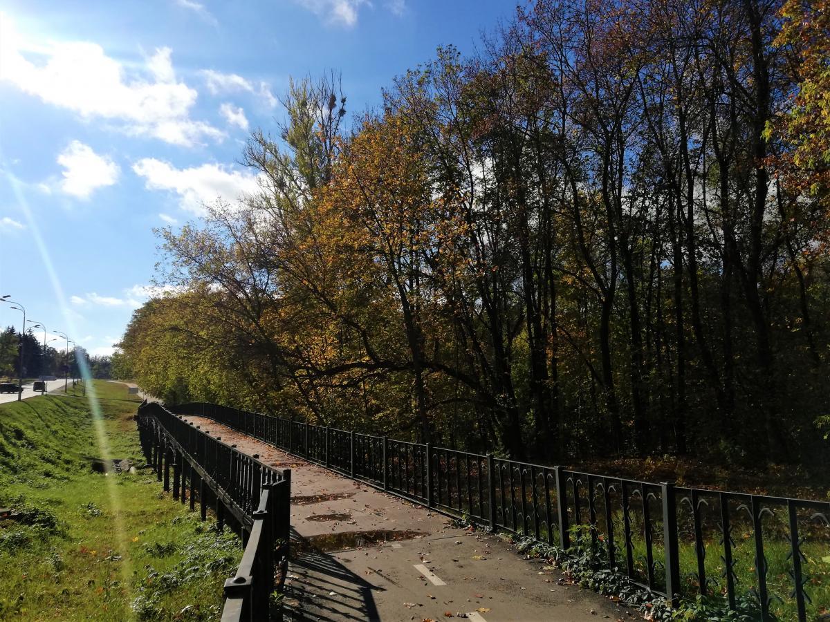 Район Лісове на околиці Харкова / фото Марина Григоренко