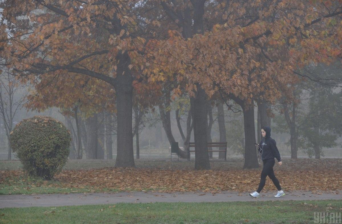 В Україні через туман та дощі оголосили I рівень небезпеки / фото УНІАН