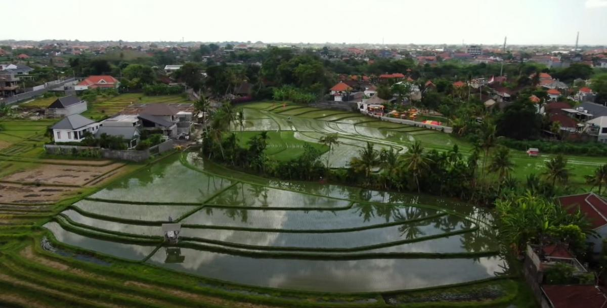 Бали - идеальное место для творческого отпуска / фото пресс-службы «1+1»