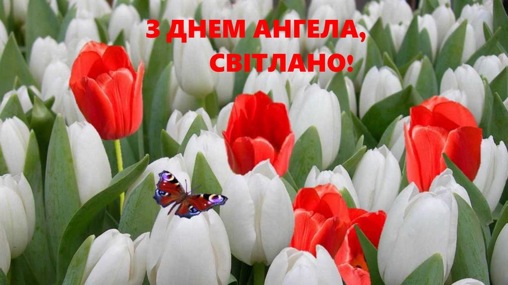 Листівки з Днем ангела Світлани / uaportal.com