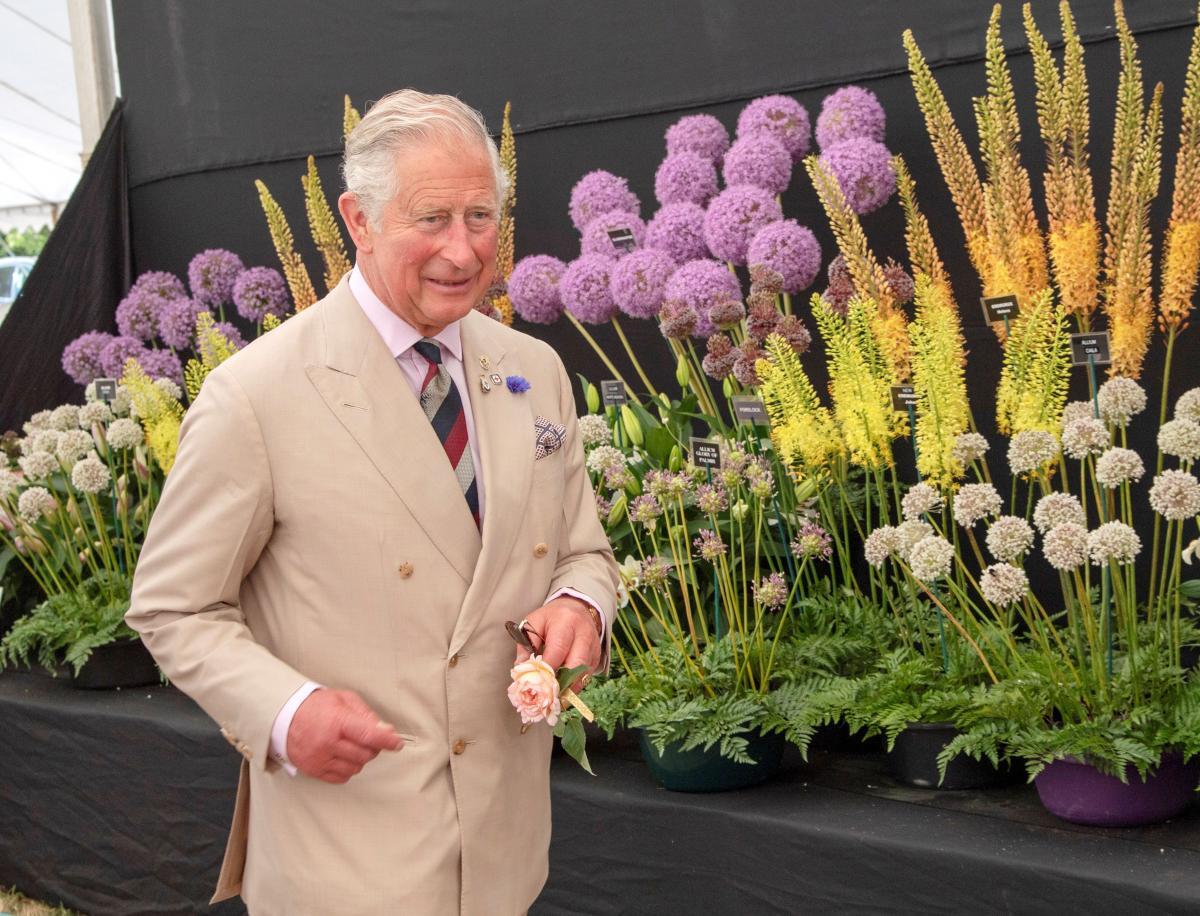 Принц Чарльз/ фото REUTERS