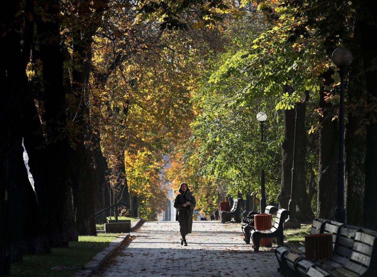 Коронавирус новости - коронавирус в Украине и мире: самое важное на 21 ноября / REUTERS